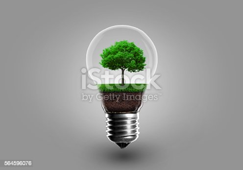498598201 istock photo Ecology Concept. Green tree growing in light bulb 564596076