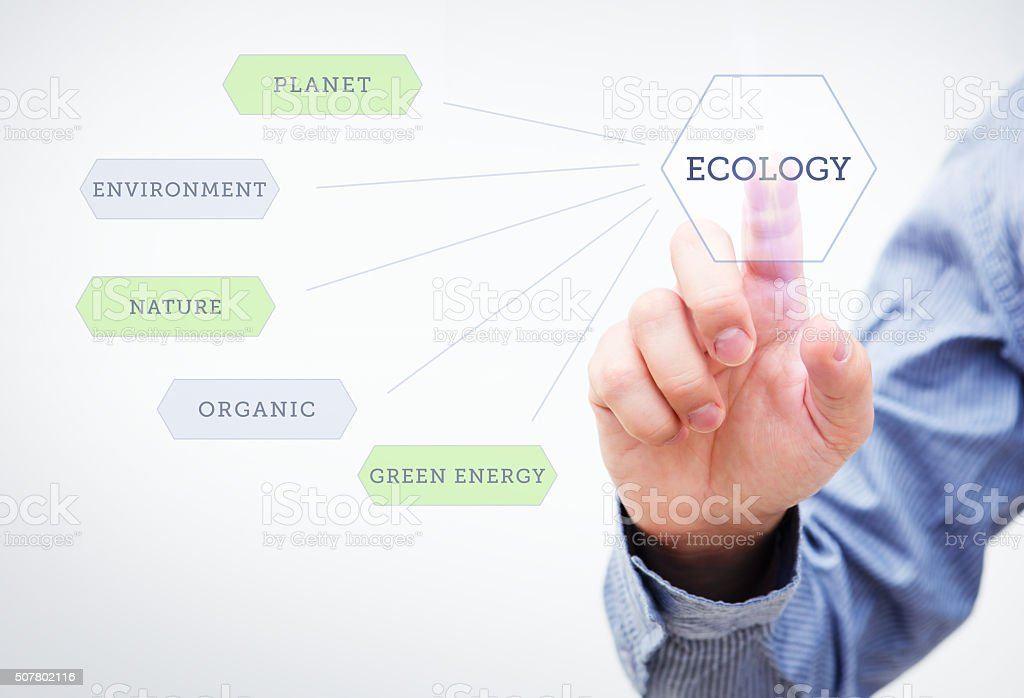 Ecology Concept stock photo
