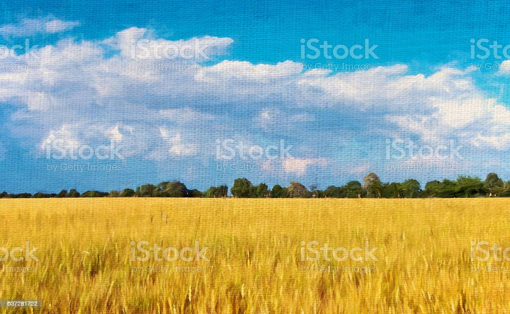 sustainable World. Natural landscape with cultivated wheat and blue...