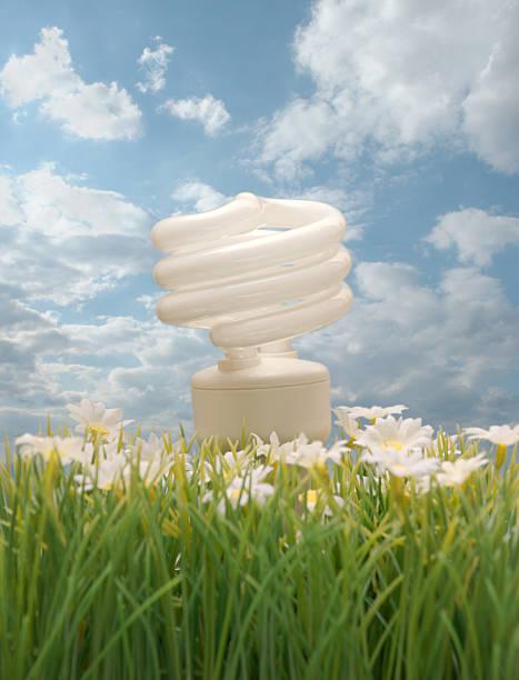 Ecology Friendly Compact Flourescent Light Bulb stok fotoğrafı