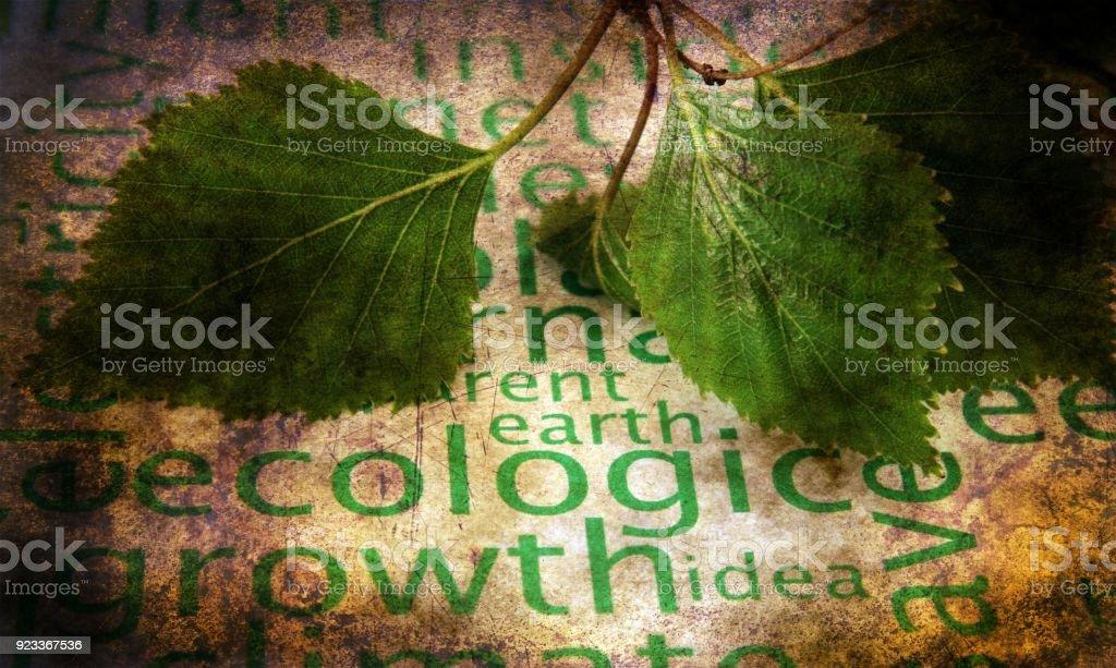 Ecology grunge concept stock photo