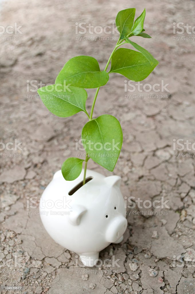 Ecology investment royalty-free stock photo