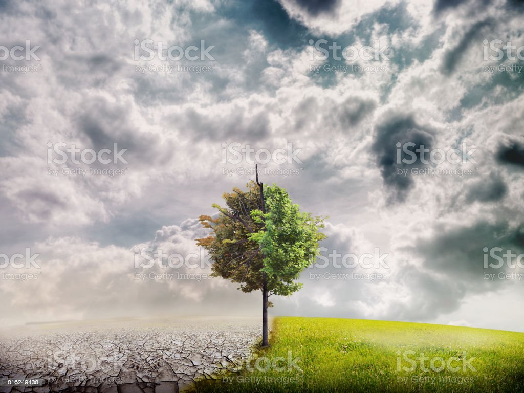 Ecology landscape stock photo