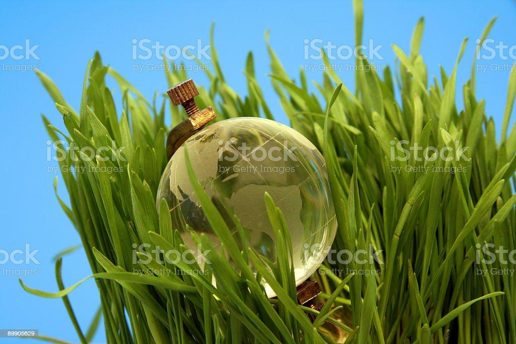 Ecology   world royalty-free stock photo