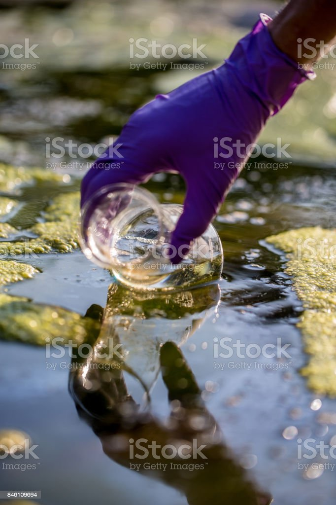Ecologyst taking a Water Sample stock photo