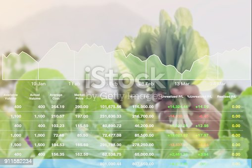 istock Economic investment successful on Agricultural product analysis report to stock market with data and graph background. 911582234
