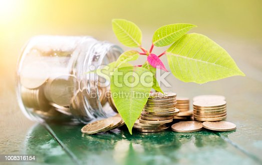 istock Economy concept -  money coins with green leaf 1008316154