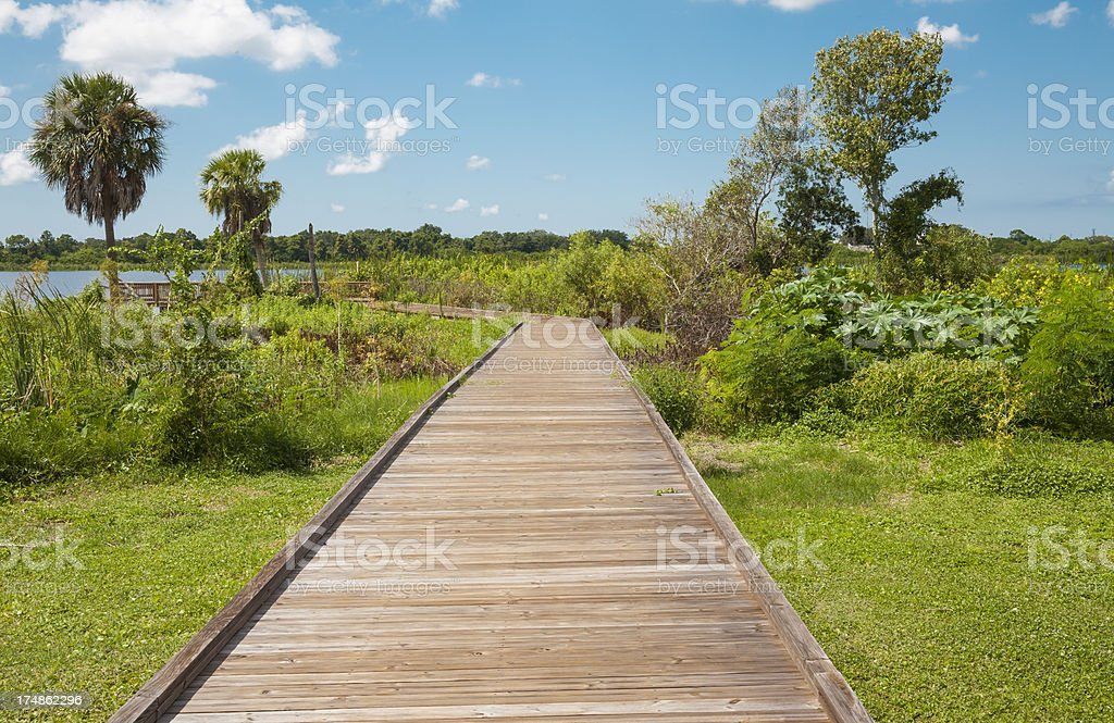 Ecotourism: Boardwalk in Florida royalty-free stock photo