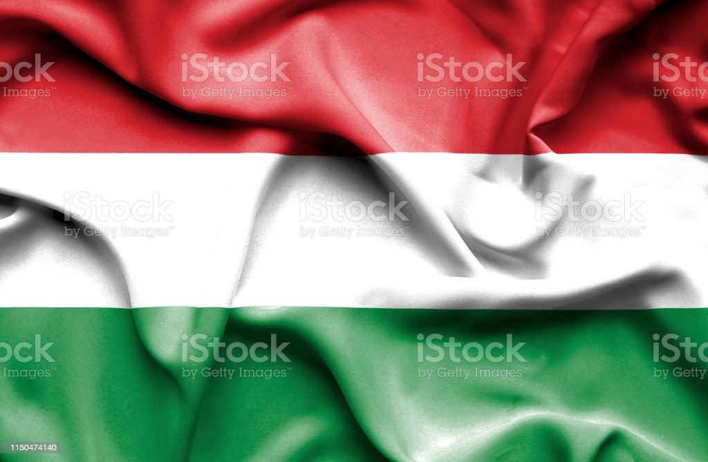Ecstatic woman holidng fists and screaming against flag of Hungary