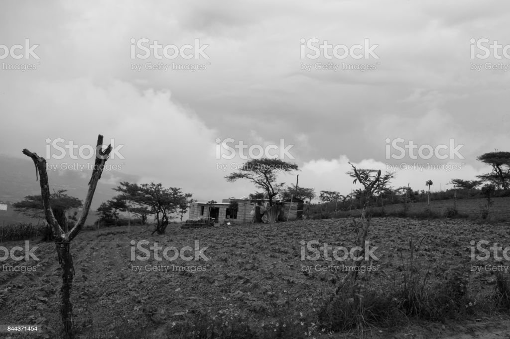 Ecuadorian Farm stock photo
