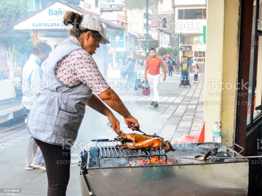 Ecuadorian woman preparing an Ecuadorian delicacy called lechon , bbq a small type of pig on grill stock photo