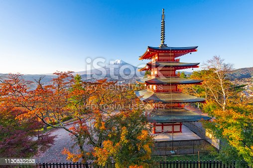 istock ed Pagoda and Colouful Red Sakura Blooming in Autumn with Fuji Mountain Background 1130832253