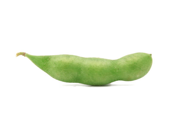 edamame beans isolated on white background edamame beans isolated on white background plant pod stock pictures, royalty-free photos & images