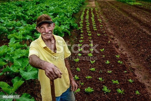 Portrait of elderly farmer at plantation, Brazil