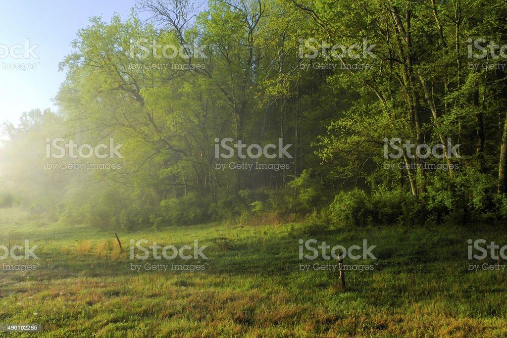 Edge Of Field stock photo
