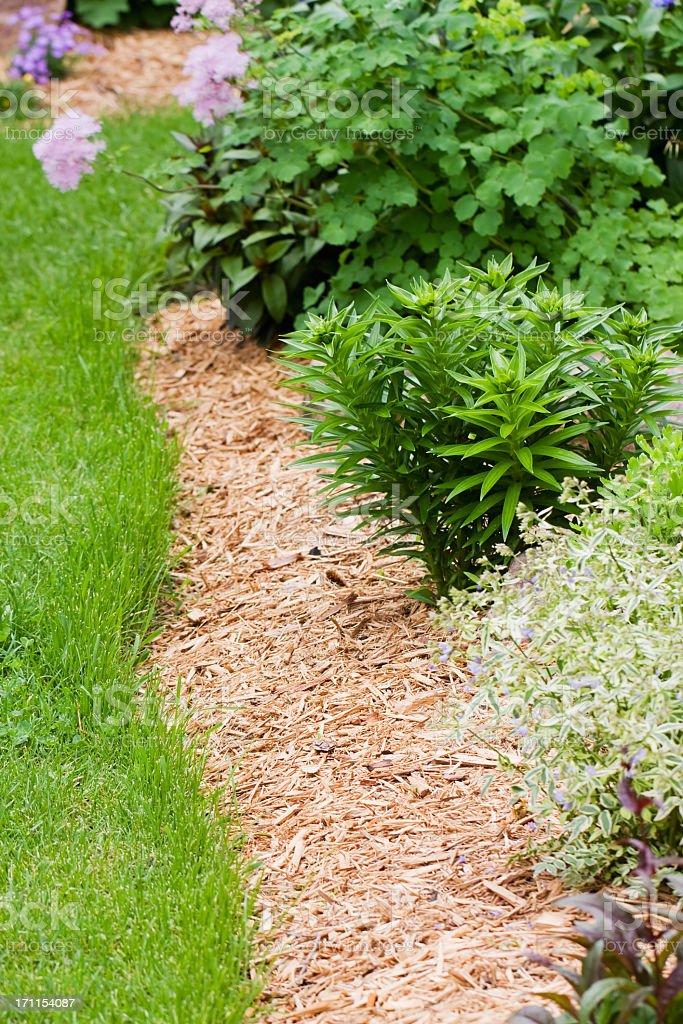 Bordure de fleurs vivaces jardin avec copeau de bois du for Fleurs du jardin vivaces