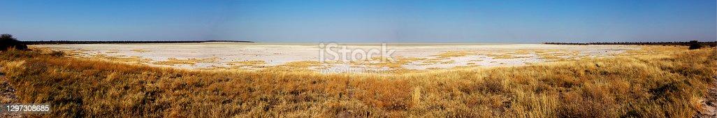Edge of the Etosha Pan in the dry season, Etosha Pan National Park, Namibia