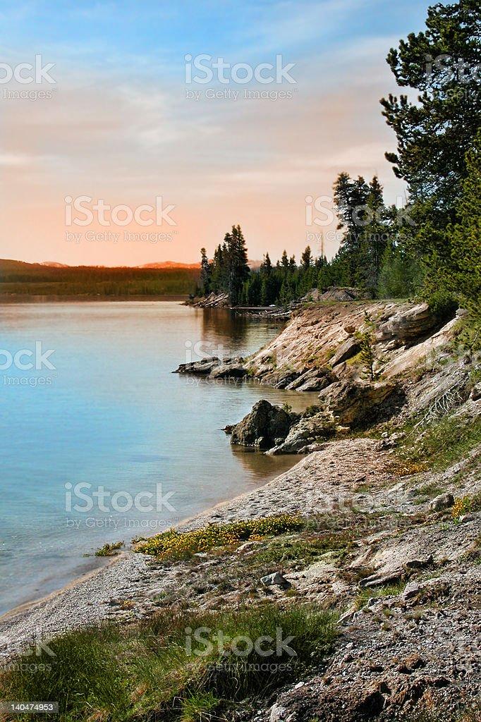 Edge of Yellowstone Lake royalty-free stock photo