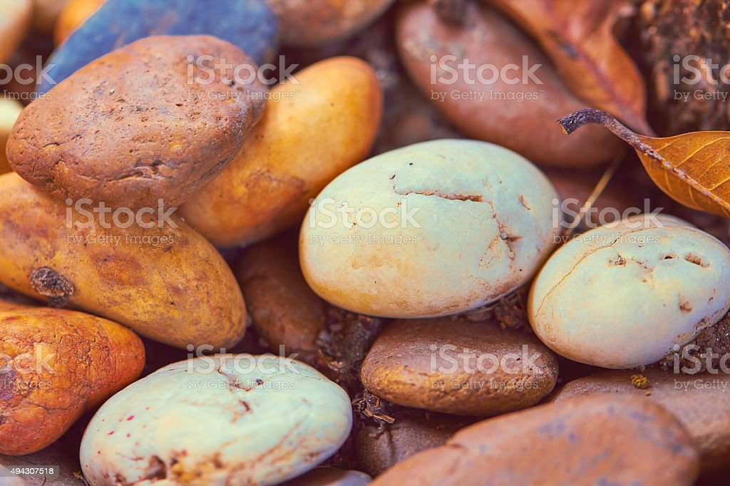 Edgewise Conglomerate for gardening and decoration stock photo