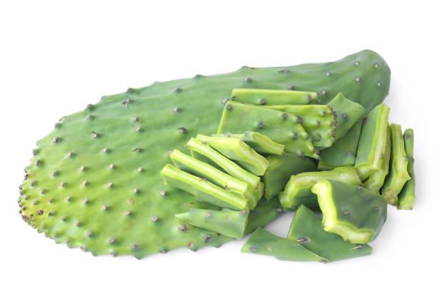 Edible green pads of Opuntia cactus stock photo
