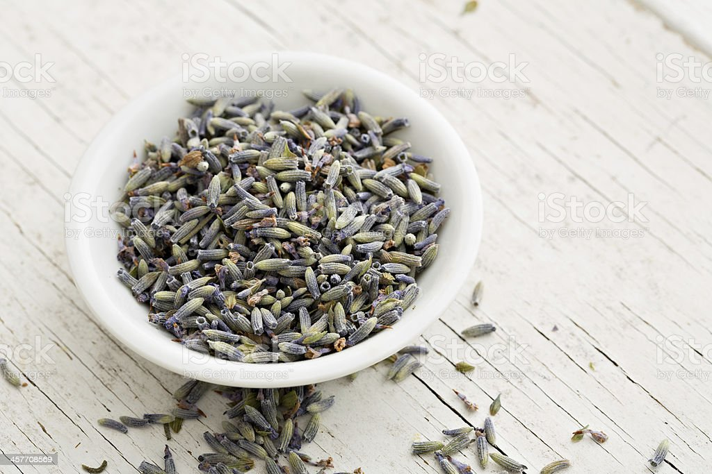 Edible Lavender royalty-free stock photo