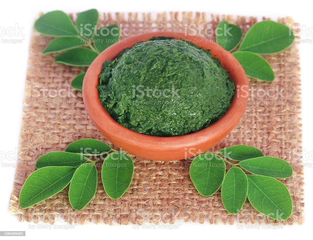 Edible moringa leaves with ground paste royalty-free stock photo