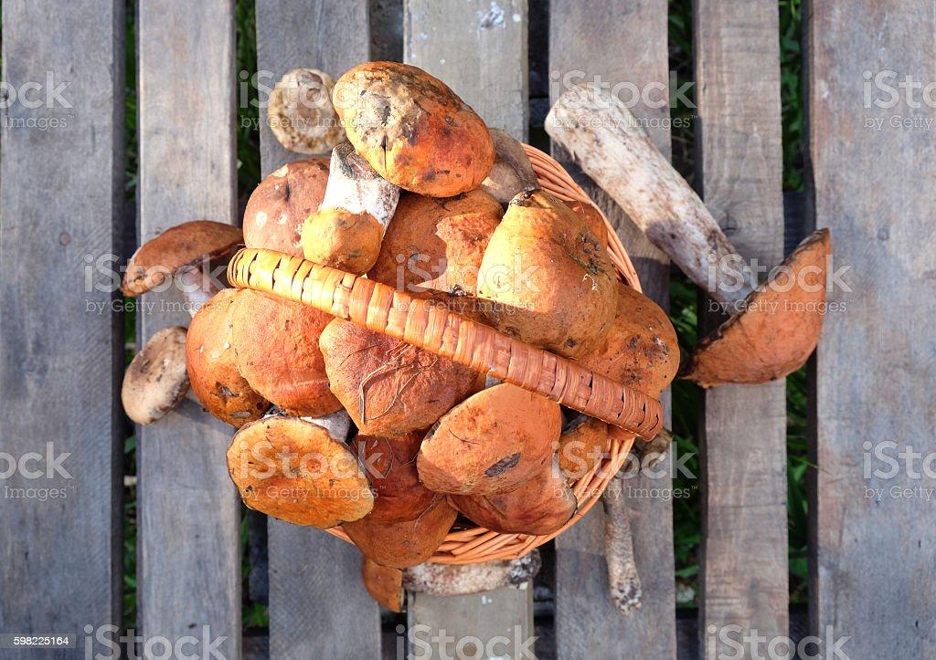 Cogumelo Comestível em uma mesa de madeira foto royalty-free