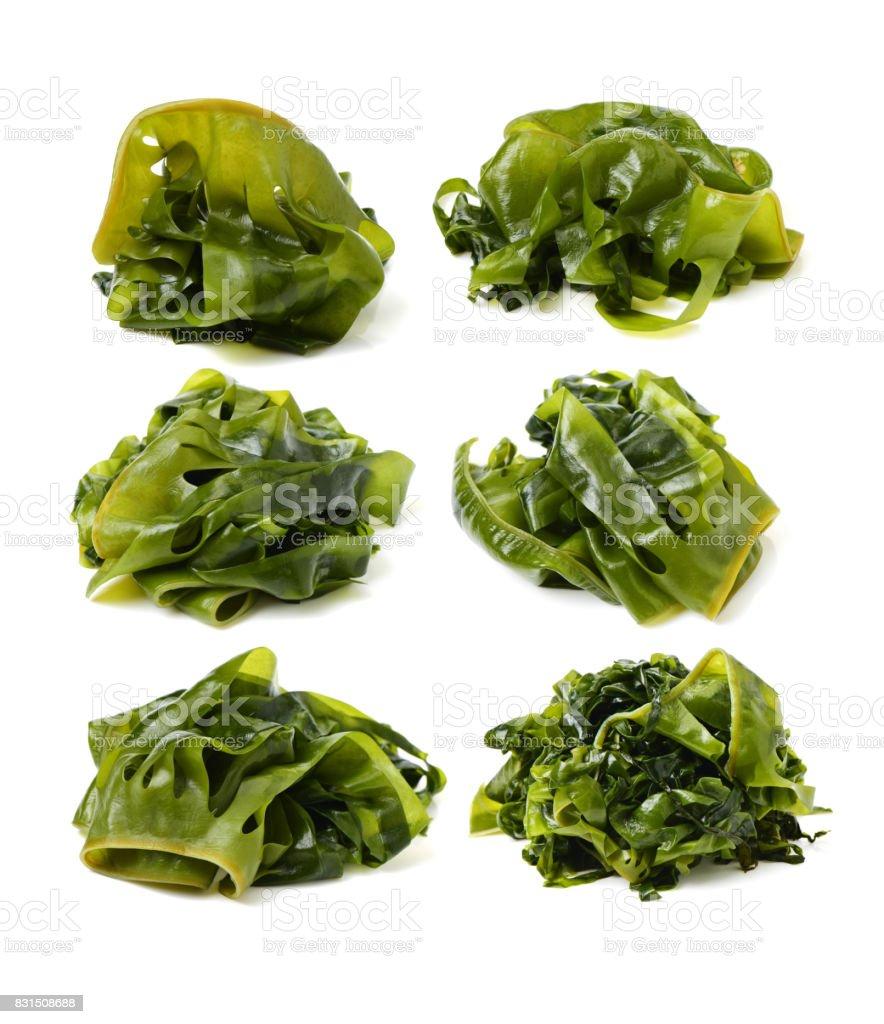 Edible seaweed on the white background stock photo