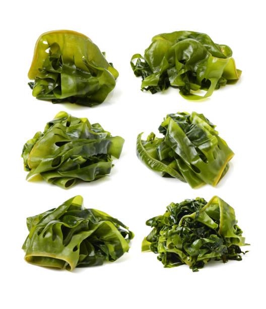 algas comestibles en el fondo blanco - algas fondo blanco fotografías e imágenes de stock