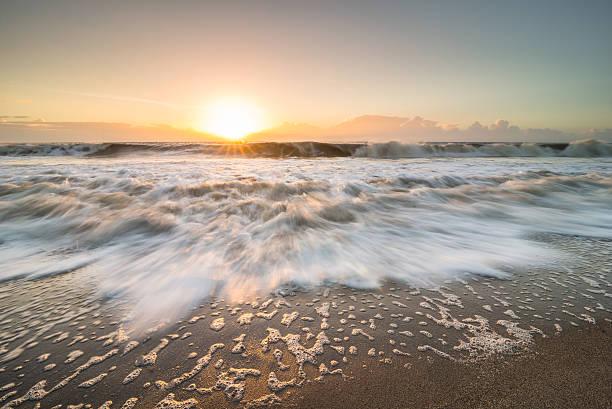 edisto island bei sonnenaufgang - die toteninsel stock-fotos und bilder