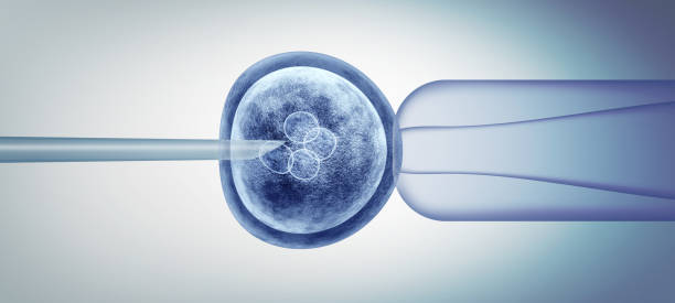 Editing Gene Biology Editing gene biology and reproductive genetic biotechnology as a 3D illustration. gene therapy stock pictures, royalty-free photos & images