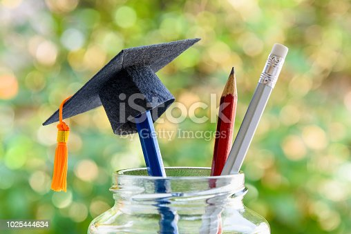istock Education and knowledge is important for student and most powerful weapon concept : Black graduation cap or hat on pencil in bottle, depicts the power of success in education. Green nature background. 1025444634