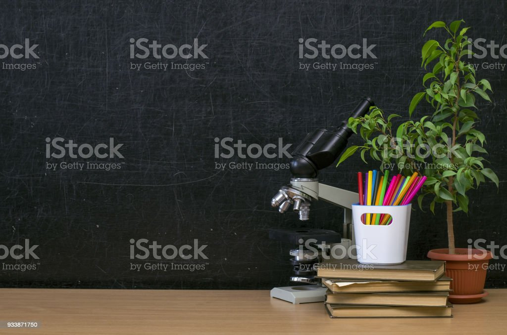 Education background with copy space. Back to school. stock photo