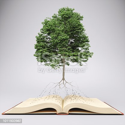 Tree with roots on an open old book.