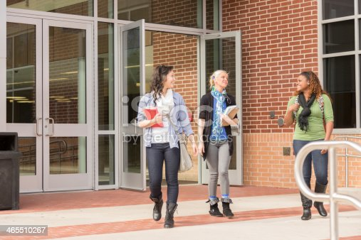 istock Education: Multi-ethnic group of college students talk on campus. 465510267