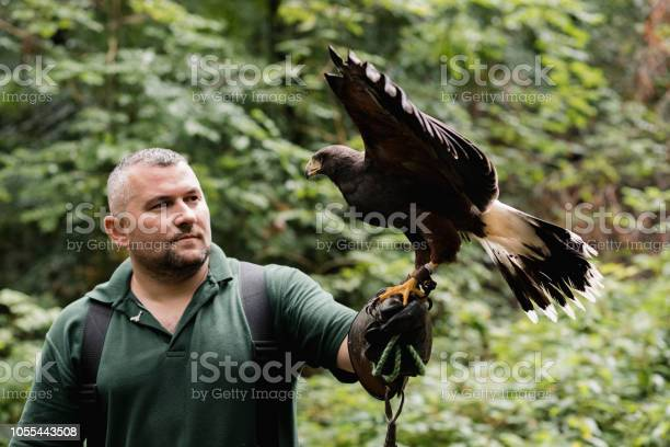 Photo of Educational Demonstration at a Falconry
