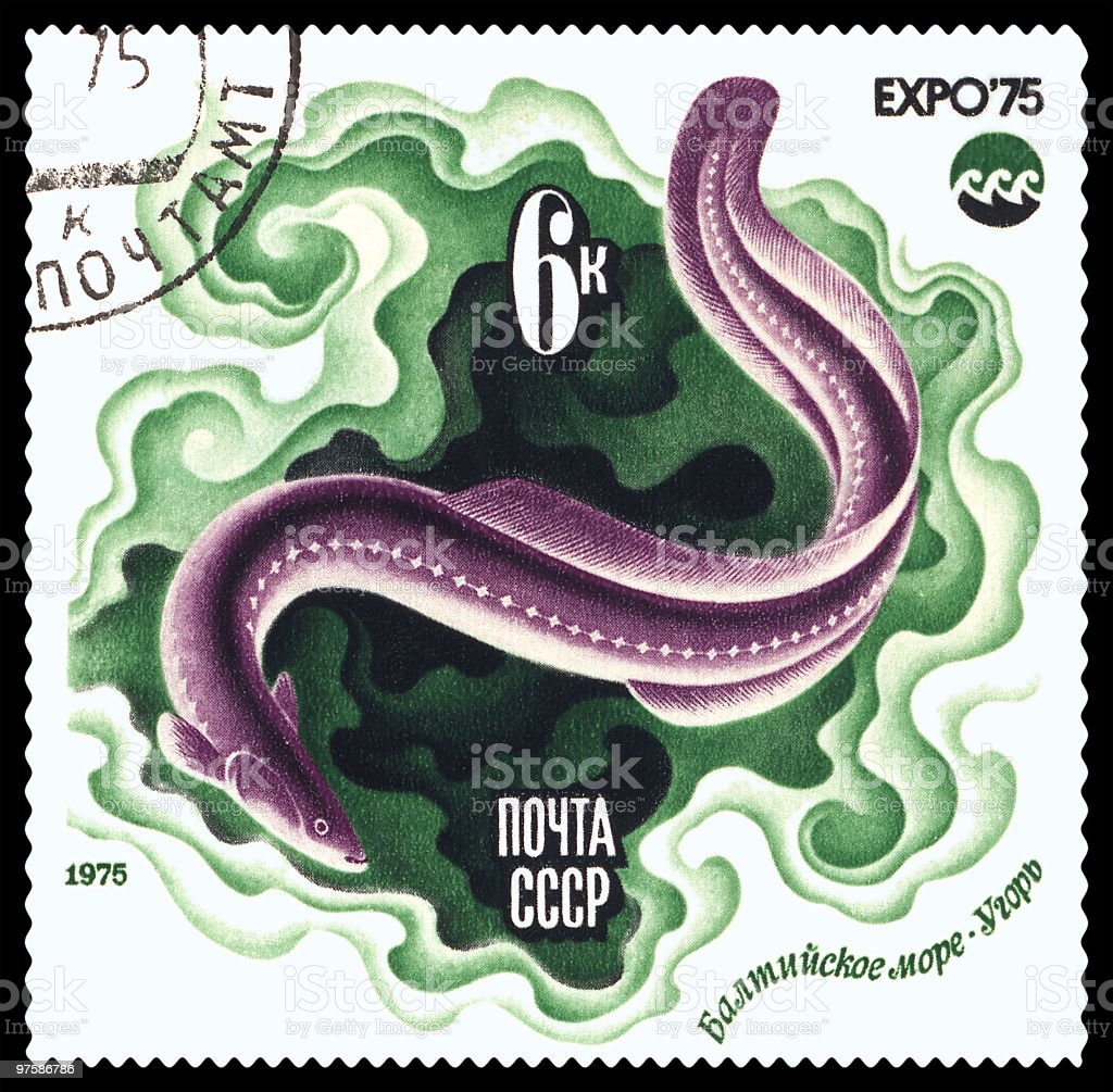 Eel postage stamp royalty-free stock photo