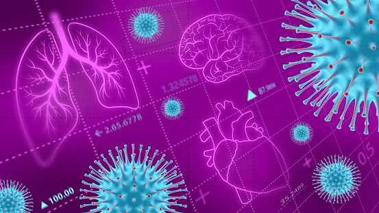 Effects of coronavirus on the lungs, heart and brain.