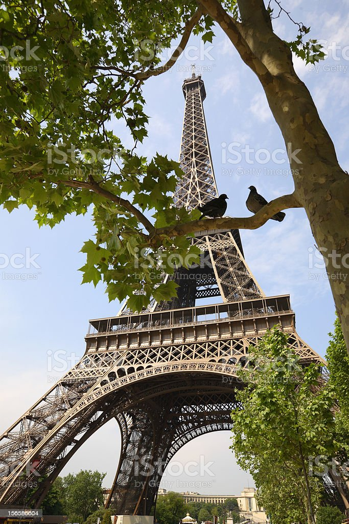 Effeil Tower stock photo