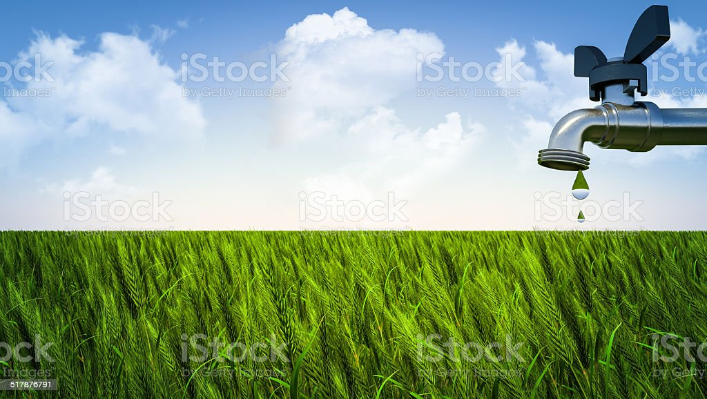 Efficiency in agriculture stock photo