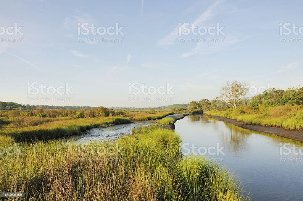 Egan's Creek Greenway and Marsh at Sunrise Amelia Island Florida royalty-free stock photo