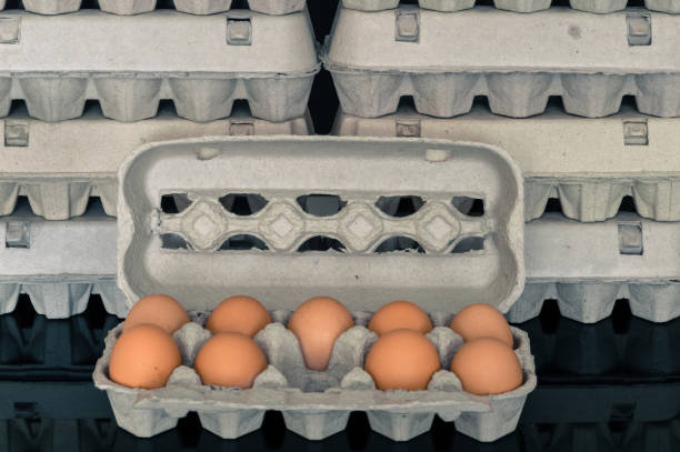 Egg box with nine organic chicken eggs inside stock photo