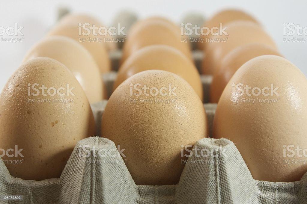 Egg Carton royalty-free stock photo
