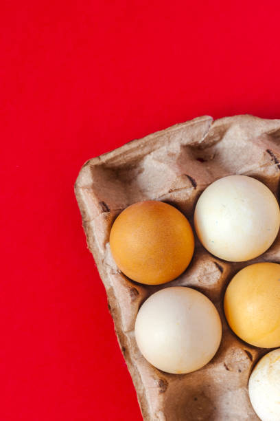 Egg carton with fresh eggs Egg carton with fresh eggs on the red background. Vertical image. Top view. Flat lay. muziekfestival stock pictures, royalty-free photos & images