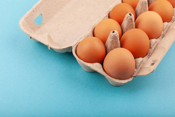 Egg Chicken eggs. Top view of an open gray box with brown eggs Isolated on a blue background. The concept of a healthy lifestyle, getting pure protein. Proper Breakfast. Dissati eggs stock photo
