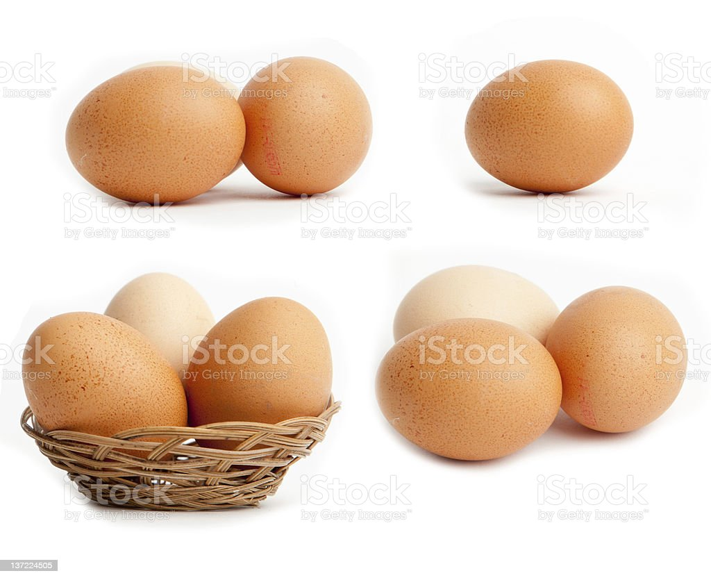 Egg collection isolated on white background royalty-free stock photo
