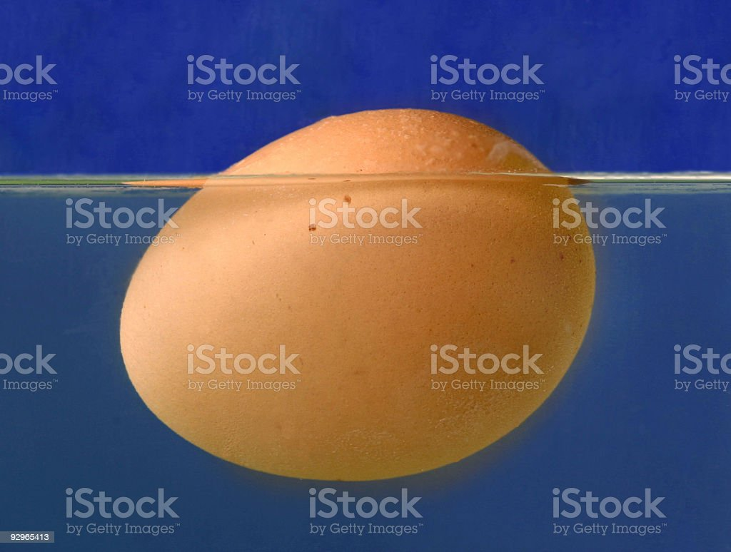 Egg floating on water on blue background stock photo