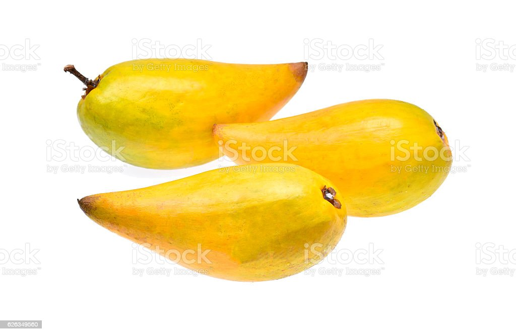 Egg fruit, Canistel, Yellow Sapote on white background stock photo
