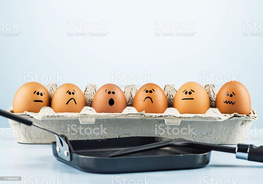 A group of eggs look on in horror at the sight of a frying pan