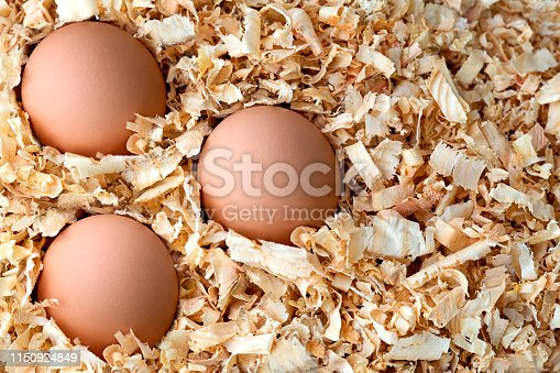 Three eggs in wood chips.